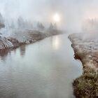 Misty Mornin' by ArtOLena