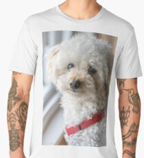 White Poodle Portrait Men's Premium T-Shirt