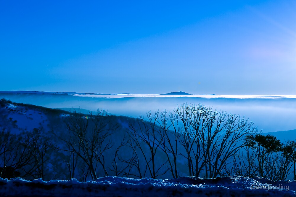 Blue Mist by Dave  Gosling Photography