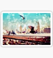 Birds, sea gulls - River thames view, London, Great Britain - England Sticker