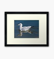 Alone on the Pond Framed Print