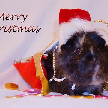 Merry Christmas from Priscilla by DeborahMcGrath