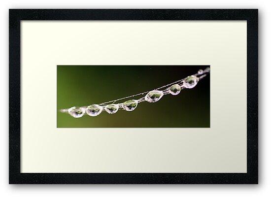 Crystal Bracelet by mikrin
