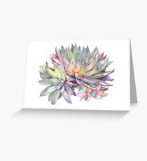 Succulent #2 Greeting Card