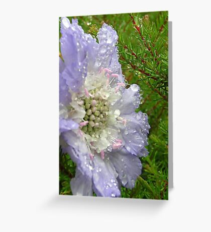 remember the time Greeting Card