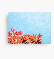 Oil Painting; Red Momiji Maple Leaves at the World Heritage Forest Kumano Kodo, Wakayama Prefecture, Japan Canvas Print