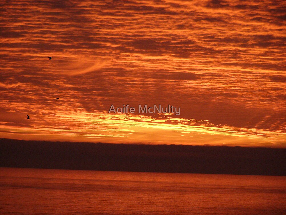 Spring Sunrise by Aoife McNulty