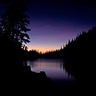 Purple Reflections by Gary Lengyel