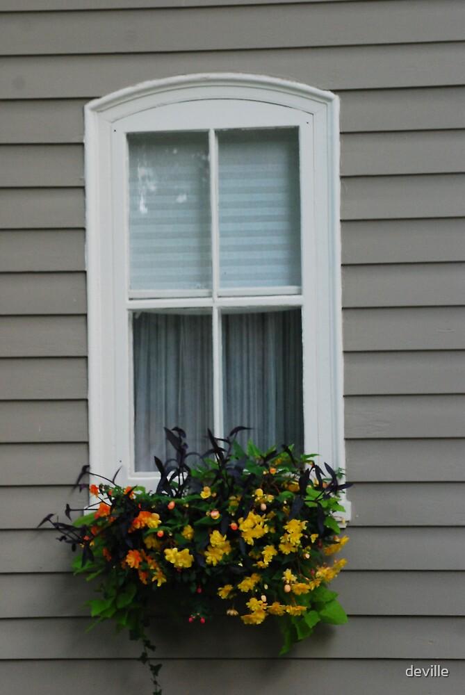 window by deville