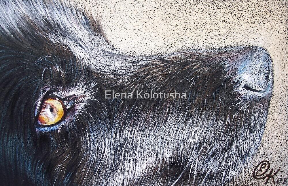 Black by Elena Kolotusha