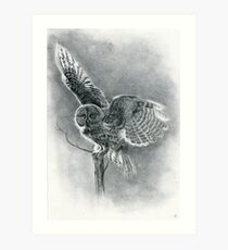 Great Grey Art Print