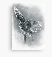 Great Grey Metal Print