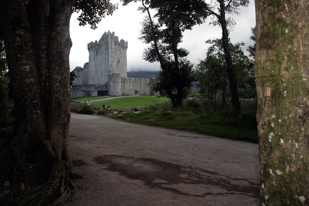 Ross castle evening view 2 by John Quinn