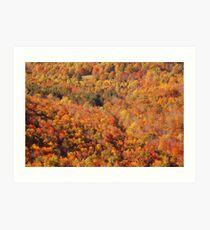 Fall in the Berkshires Art Print