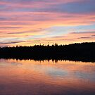 Pink Sky Reflection by Martha Medford