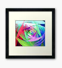 Soft Flower Framed Print