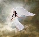 In the arms of the Angel by Linda Lees
