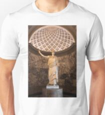 Other Treasures OF The Louvres - 1 ©  T-Shirt