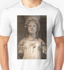 Other Treasures OF The Louvres - 3 ©  T-Shirt