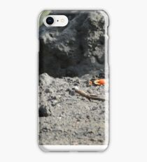Crab in the landscape iPhone Case/Skin