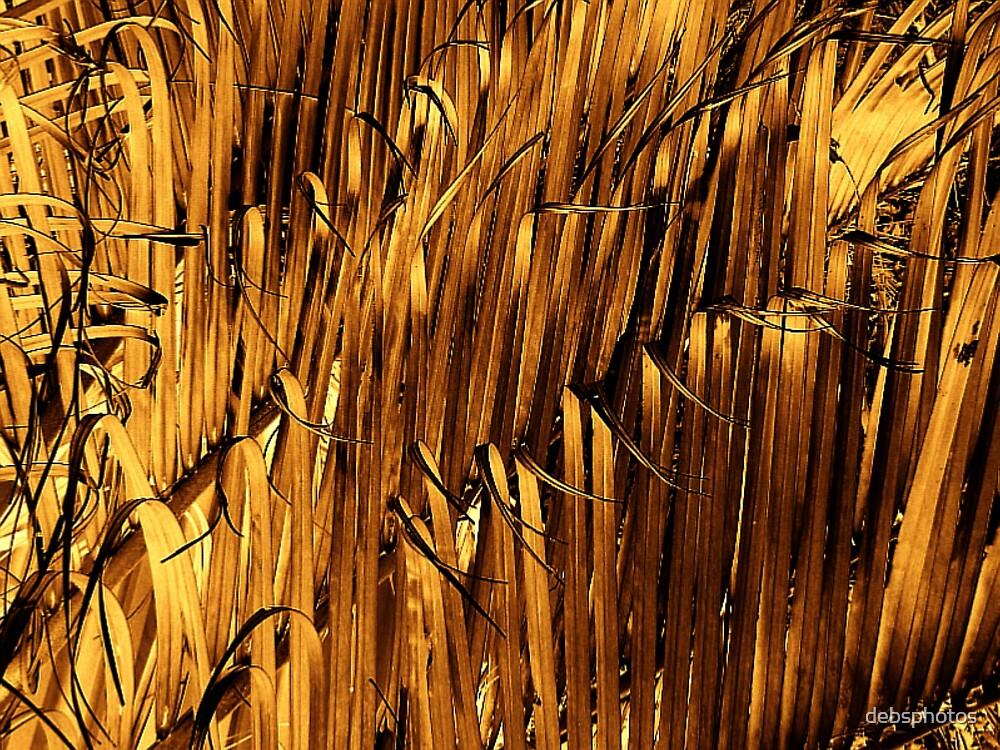 """""""Golden Absract"""" by debsphotos"""