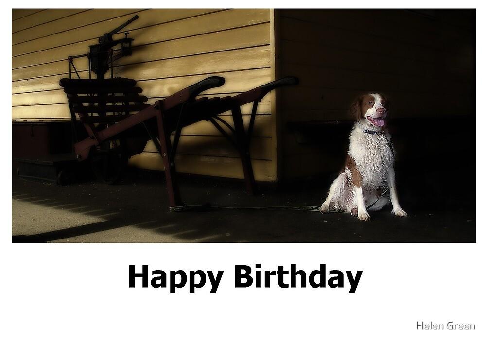 Birthday Card No 4 by Dog Shop