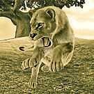 Hunting Lioness  by Vac1