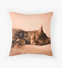 Tabby cat sleeping Throw Pillow