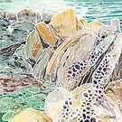 Tidepools and Tafoni by Carrie Alyson