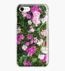 Natural background with pink flowers iPhone Case/Skin