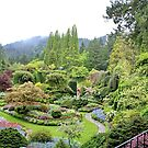 Butchart Gardens on a Very Wet Day in May 2017 by AnnDixon