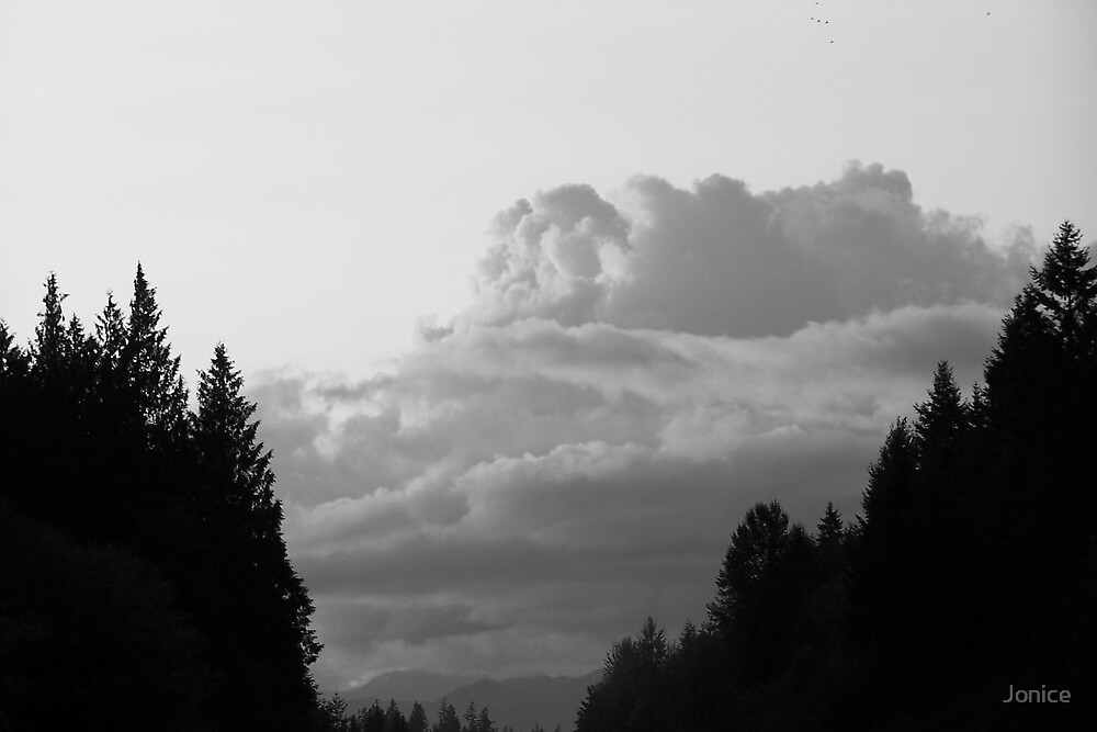 Black and White Sunset by Jonice