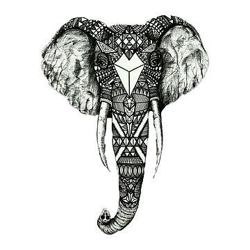 wild elephant  by Nivantha
