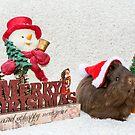 Merry Christmas Buddy by JEZ22