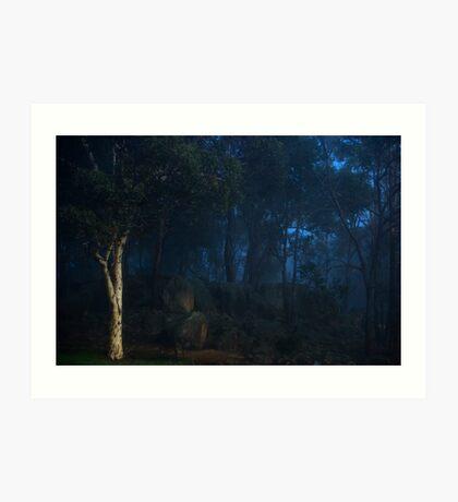 Boddington Fog 2 Art Print