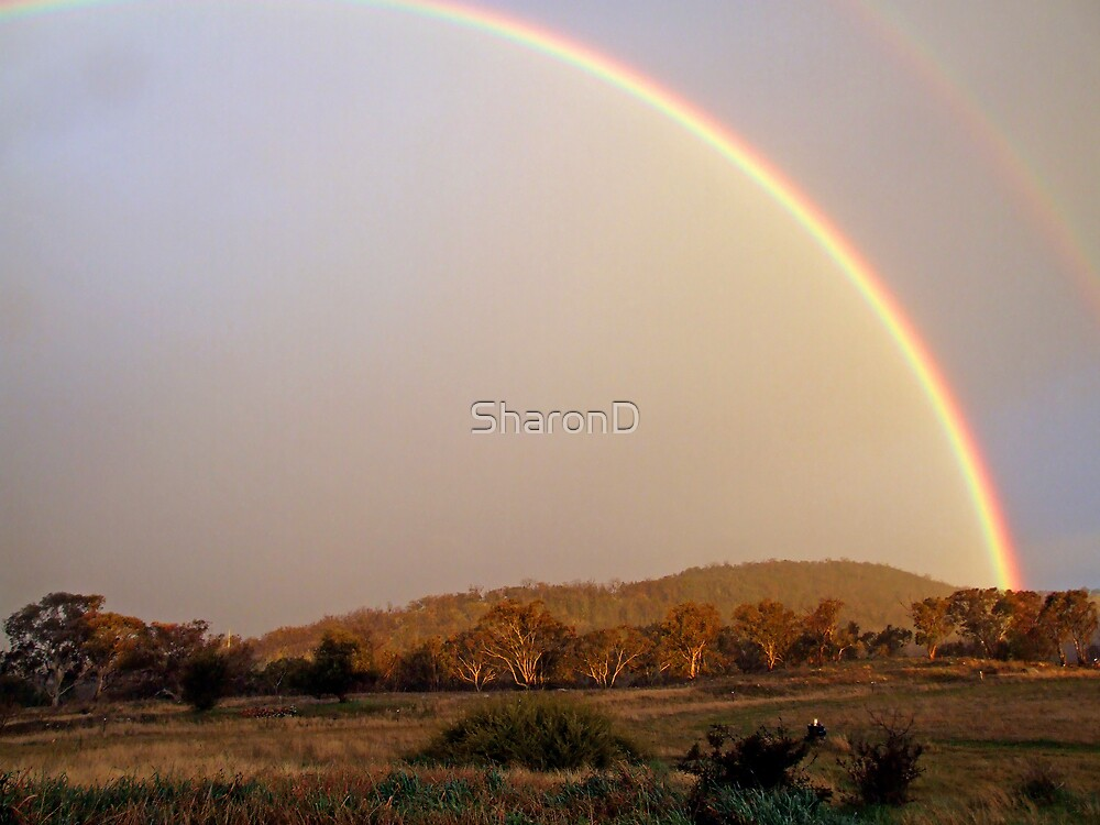 August Rainbow by SharonD