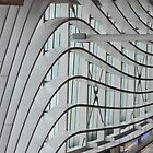Wavey lines by lizdomett