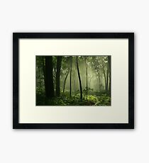 feel this country .Marysville. Framed Print