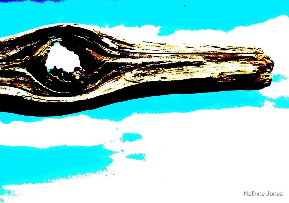 Abstract Wood Knot  Hole and Sky Polarized by Nalinne Jones