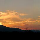 Smoky Sunset by Kathie Nichols