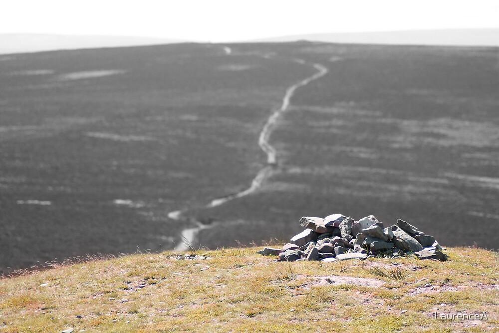 Solitude on Exmoor by LaurenceA