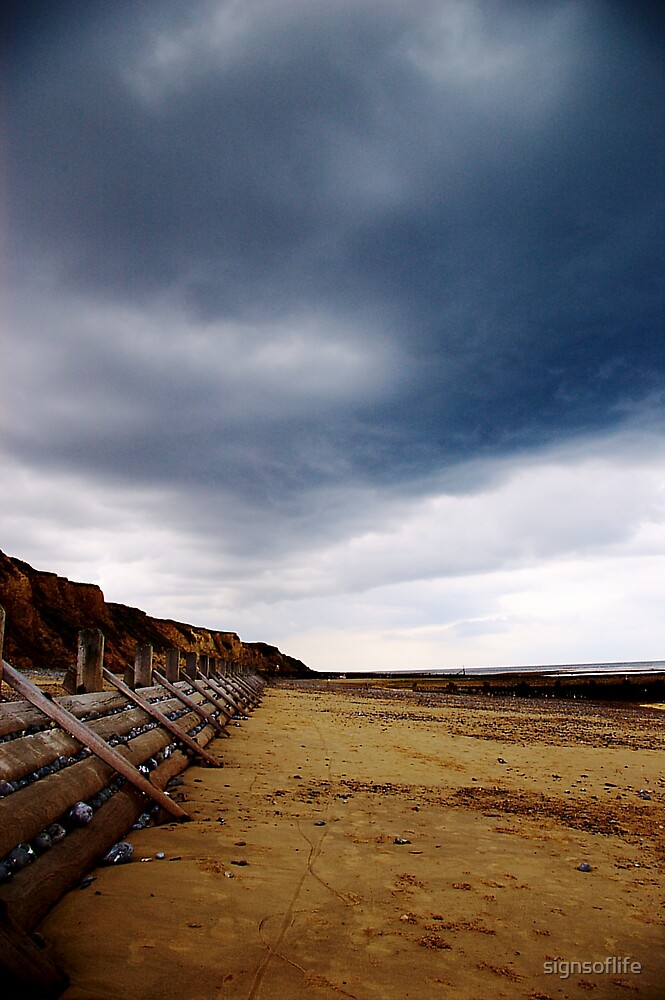 Stormy Beach by signsoflife
