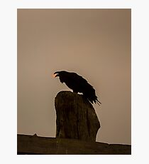 Raven Steals the Smokey Sun Photographic Print