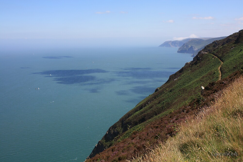 View of the Coast - North Devon by LaurenceA