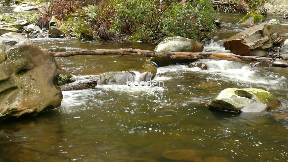 Cumberland river scene by beeden