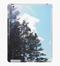 Sunlight Streaming Over Forest iPad Case/Skin