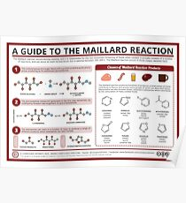 The Maillard Reaction Poster