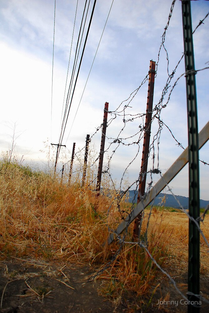 fence by Johnny Corona