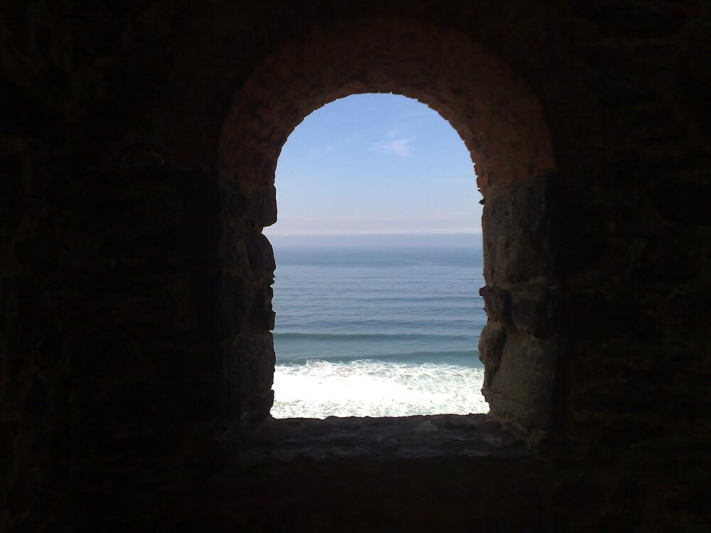 Windowsill by maddyjhart