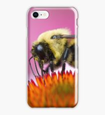 Bumble Bee Atop Flower iPhone Case/Skin